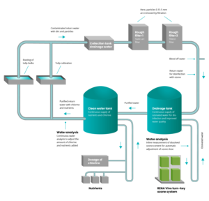 Flowchart with RENA Vivo turn-key water treatment system for greenhouse tulip cultivation