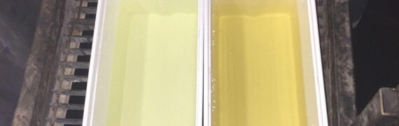Before and after Ozonetech's ozone treatment